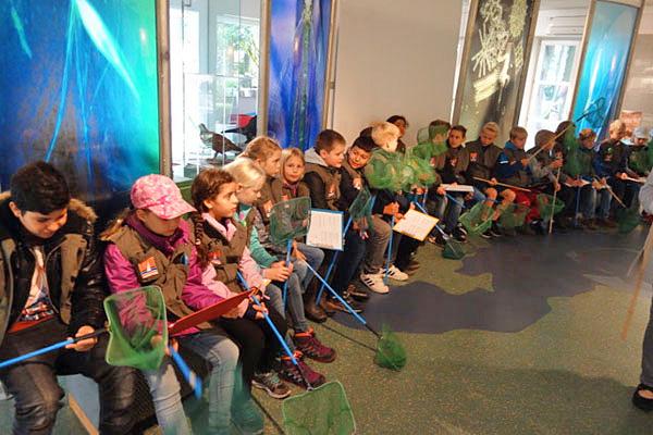 Die Klassen 4a und 4c besuchten den Dümmer